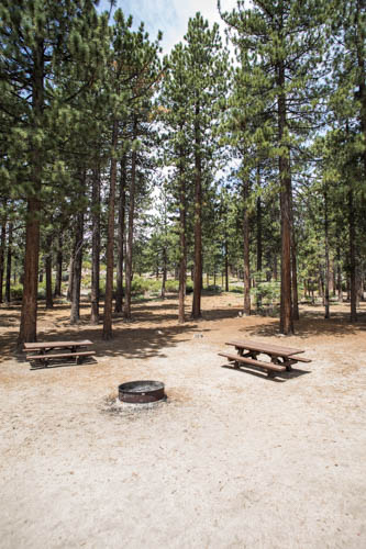 Boulder Group Campground - Angelus Oaks