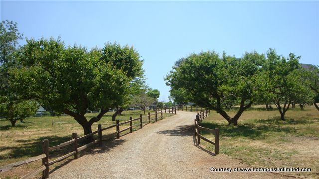 Beaucrest Ranch - Beaumont
