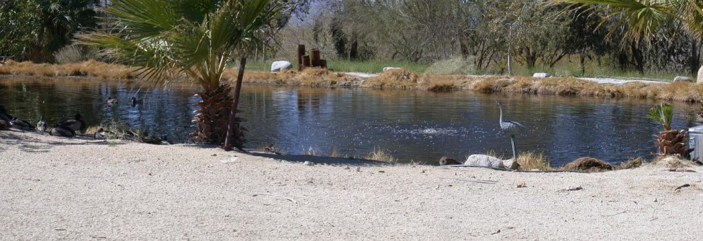 Bubbling Wells Ranch - Desert Hot Springs