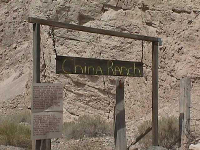 China Ranch - Tecopa-04