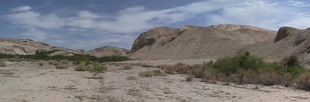 China Ranch - Tecopa-07
