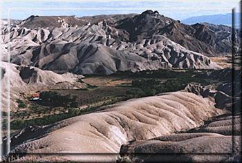 China Ranch - Tecopa-09