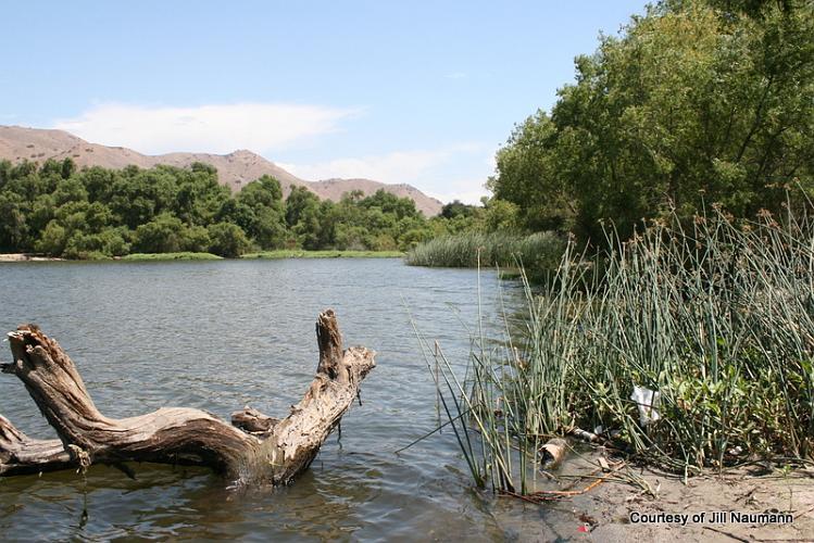 Corona Lake - Corona