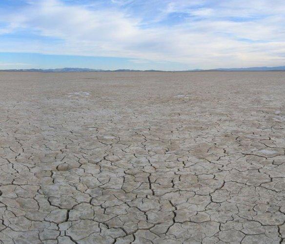 Coyote Dry Lake - San Bernardino