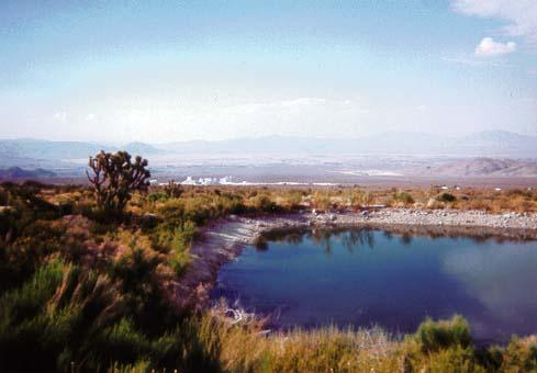 Crystal Creek Pond - Lucerne Valley