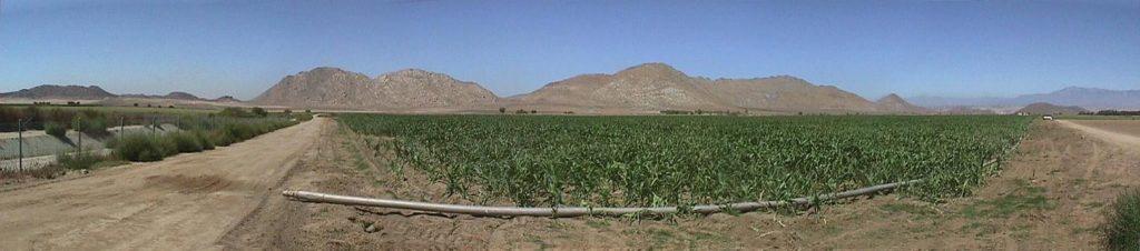 Devaust Farm - Nuevo
