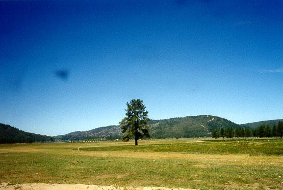 Garner Valley