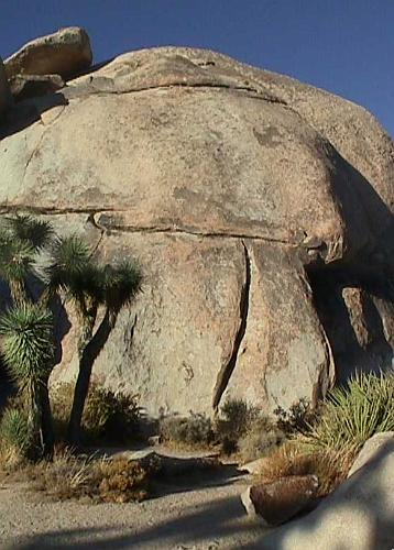 Joshua Tree National Park Cap Rock