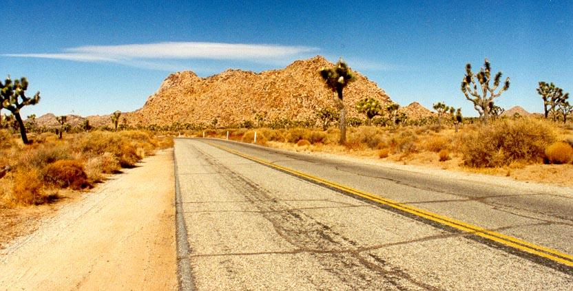 Joshua Tree Road
