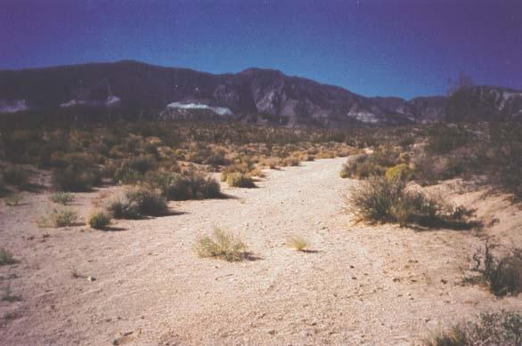 Many Springs Ranch - Lucerne Valley