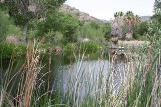 McKinney Ranch - Morongo Valley