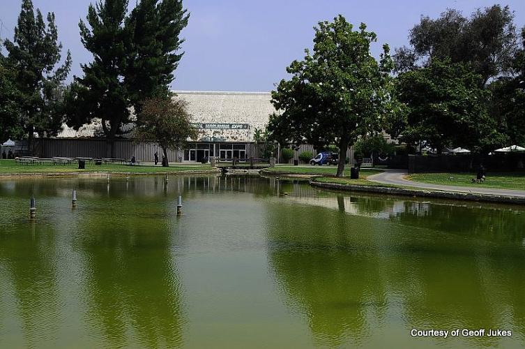 National Orange Show - San Bernardino