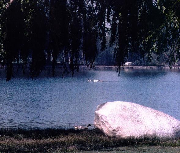 Rancho Jurupa Regional Park - Riverside