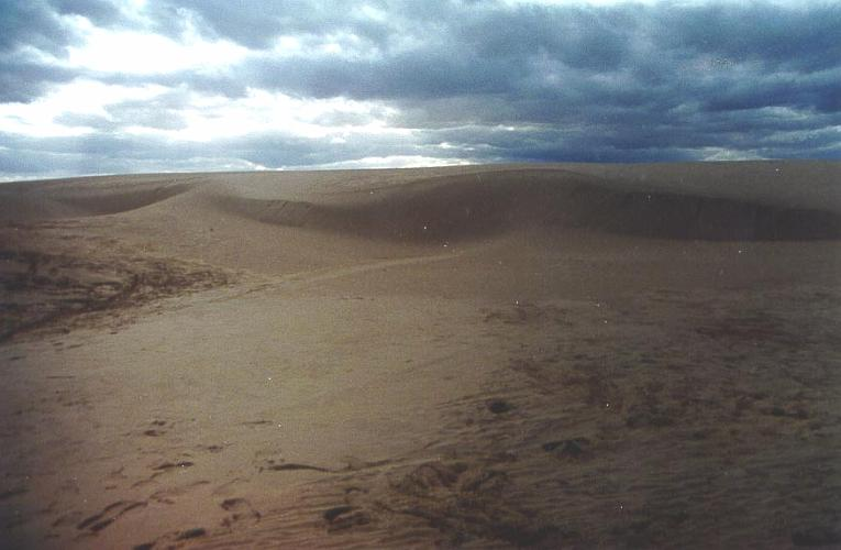 Salton Sea Sand Dunes