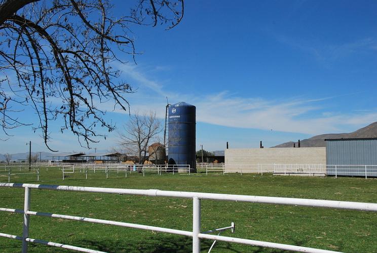 Silo Harvestore - San Jacinto