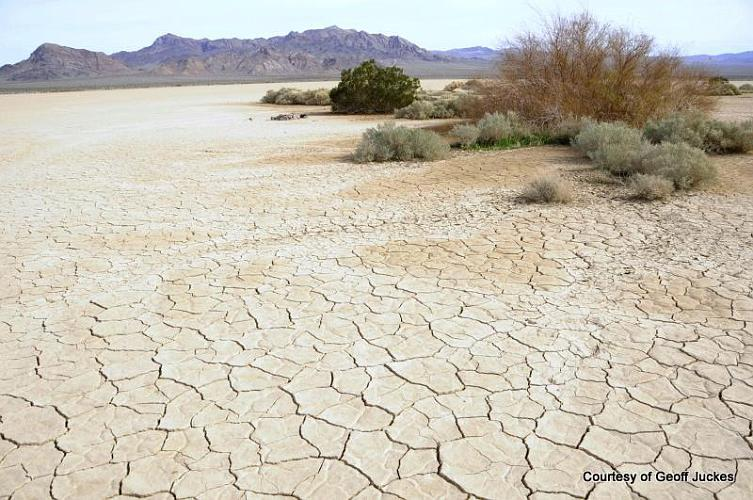 Silurian Dry Lake - Baker