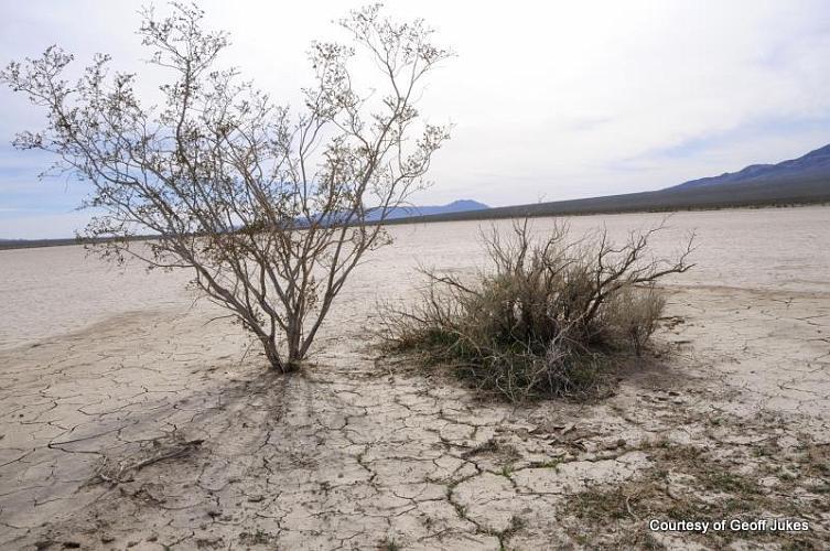 Silurian Dry Lake - San Bernardino County