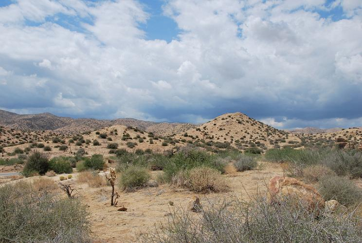 Wildlands Conservancy - Pioneertown Area