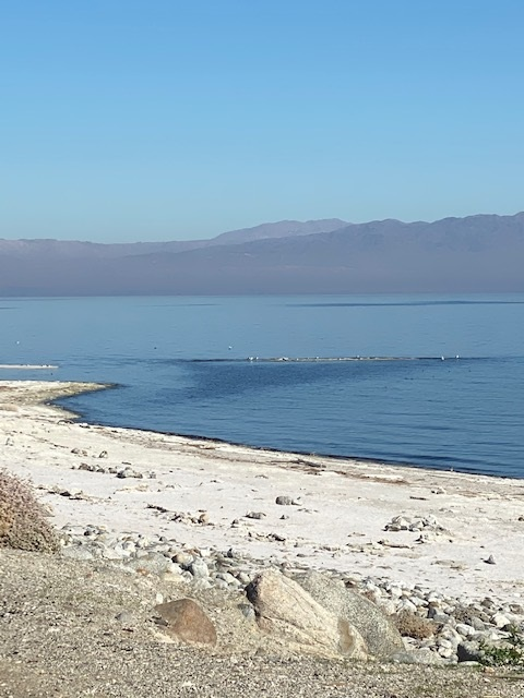 Salton Sea - Desert Shores 05