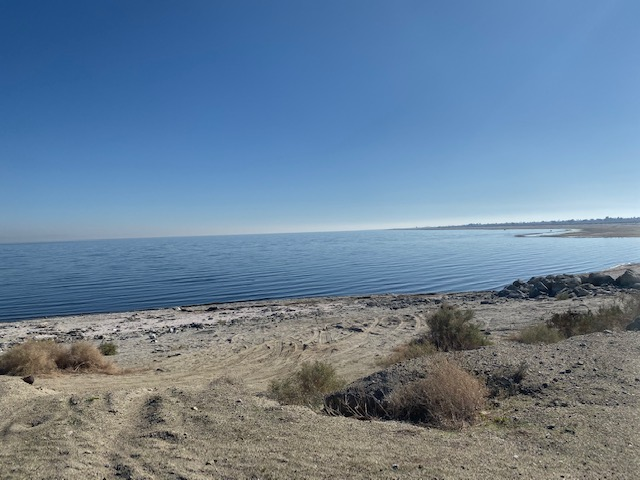 Salton Sea - Desert Shores 06