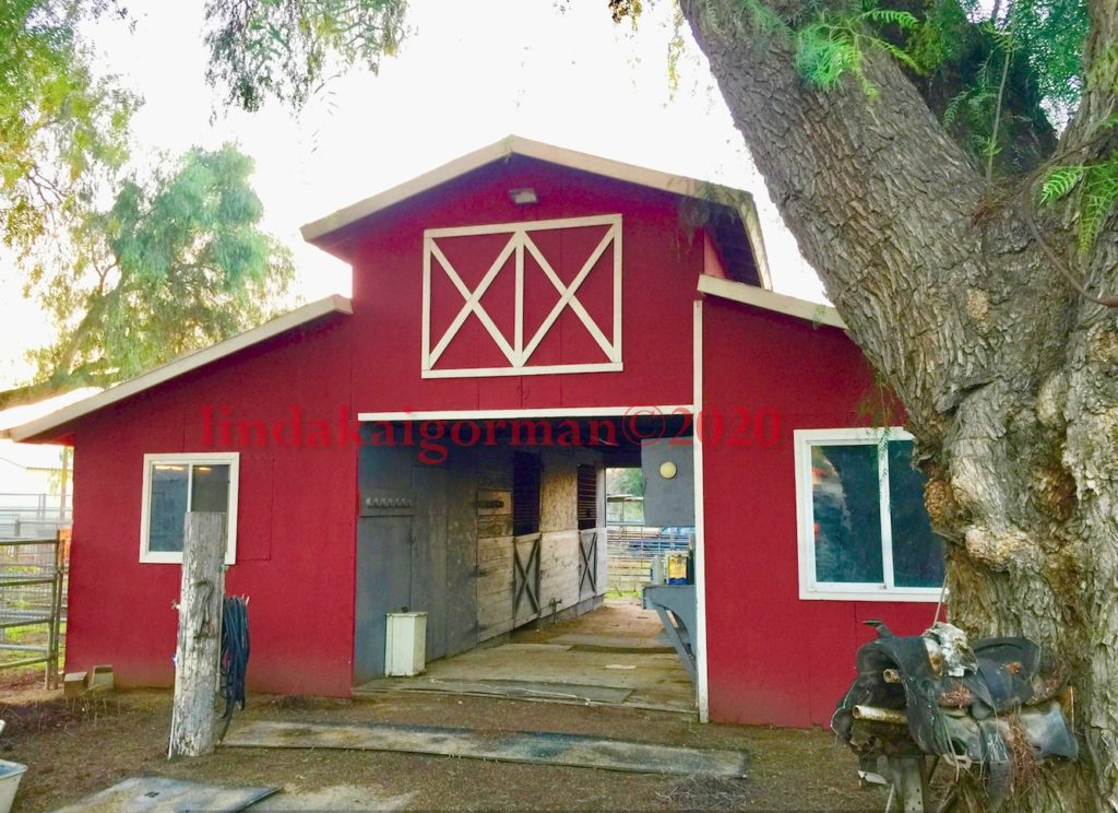 Red Barn Ranch   Norco