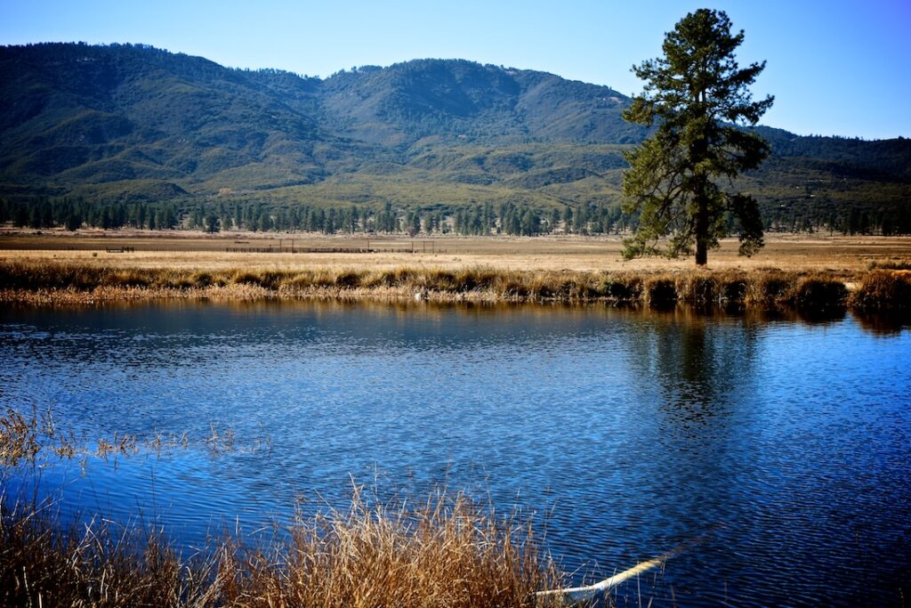 Garner Valley Ranch-Mountain Center-04