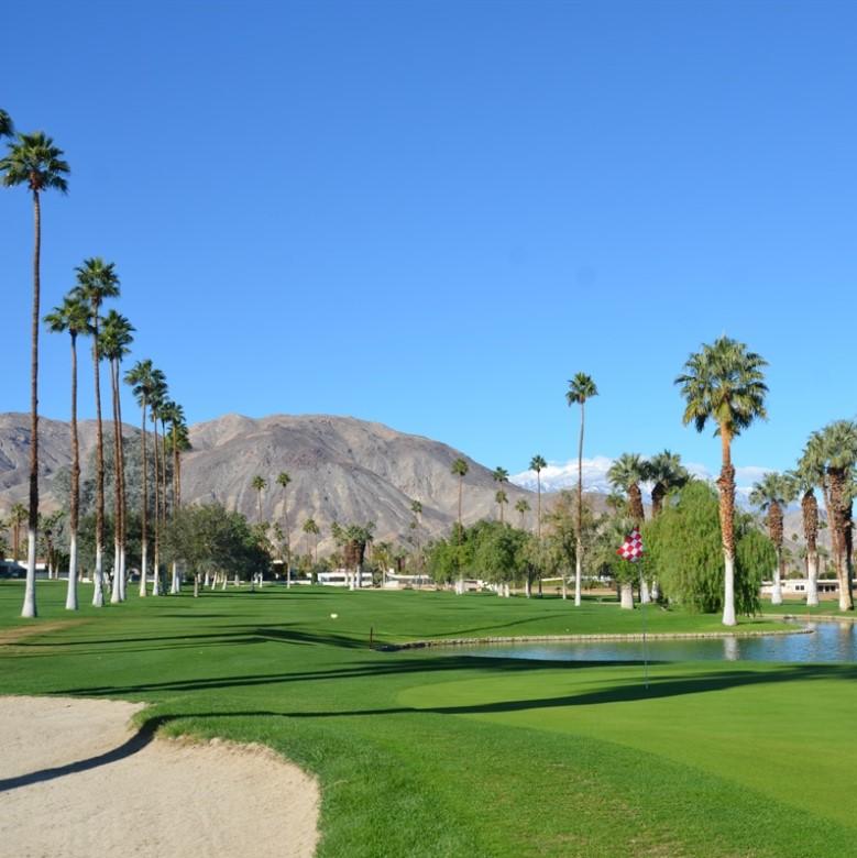 Shadow Mountain Golf Club   Palm Desert
