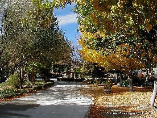 Brennen Ranch - El Mirage
