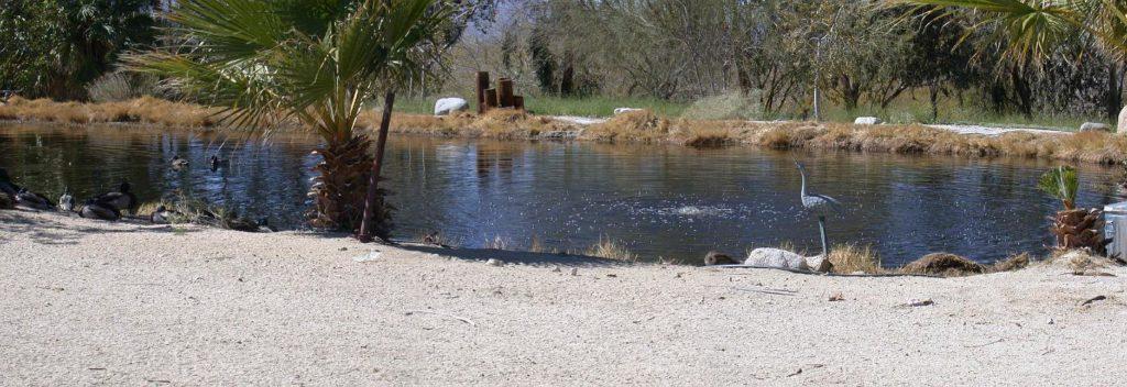 Bubbling Wells Ranch - Desert Hot Springs