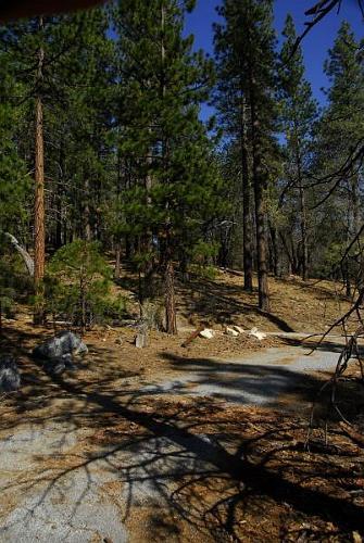 Camp Lobo Oso - Angelus Oaks