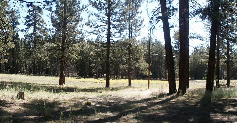 Camp Whittle - Fawnskin