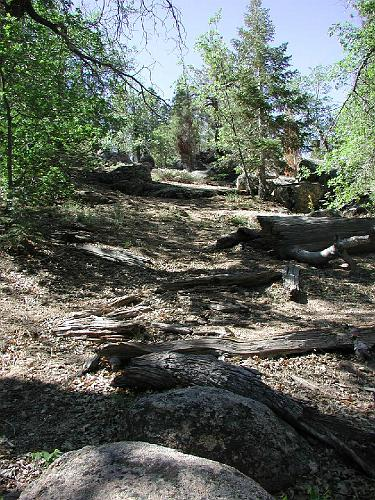 Cedar Lake Camp - Big Bear Lake