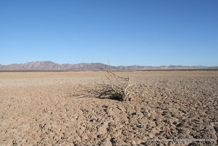 Dale Dry Lake - Twentynine Palms