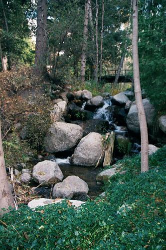 Forsee Creek Weesha Club - Angelus Oaks