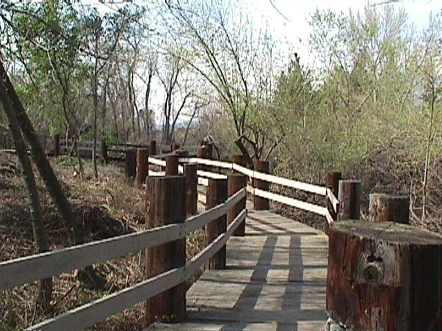 Glen Helen Regional Park - Devor