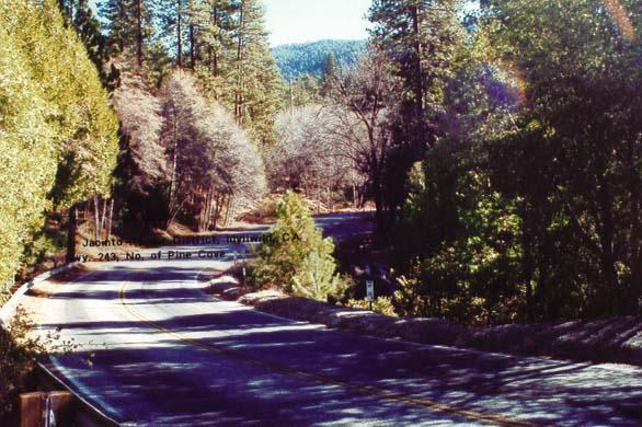 Highway 243 - Idyllwild5