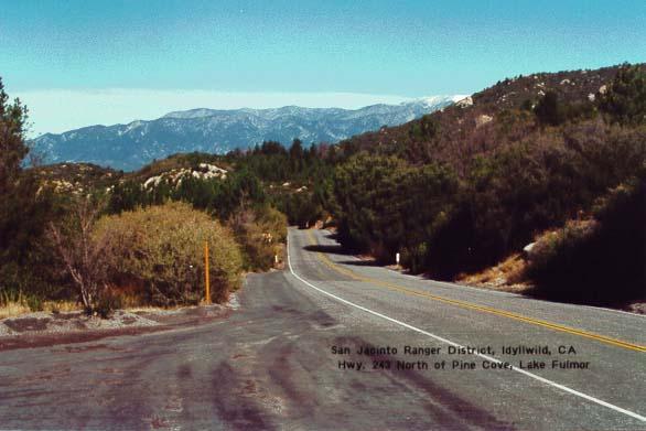 Highway 243 - Idyllwild2
