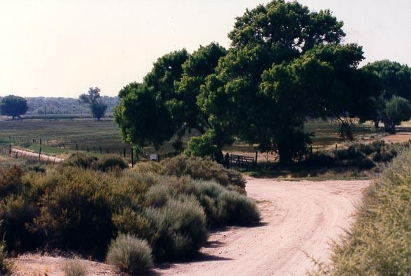 Kemper Campbell Ranch - Victorville