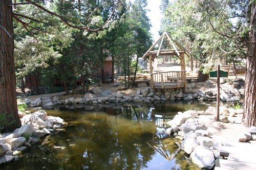Pine Rose Cabins Pond - Arrowhead