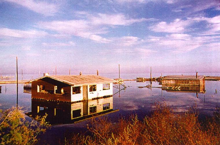 Salton Sea - Mecca