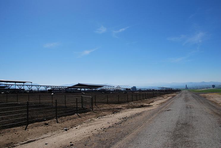 Scott Brothers Dairy - Moreno Valley
