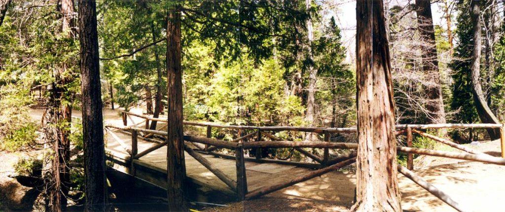 Tata Pochon Camp - Angelus Oaks