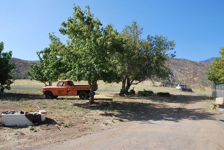 Taylor Ranch - Oak Glen