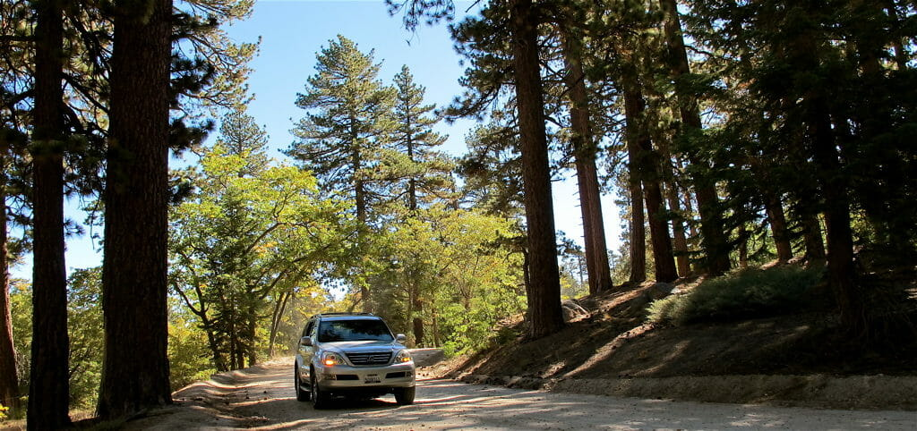 Forest Road 2N17   Big Bear Lake Mikhael Griffin