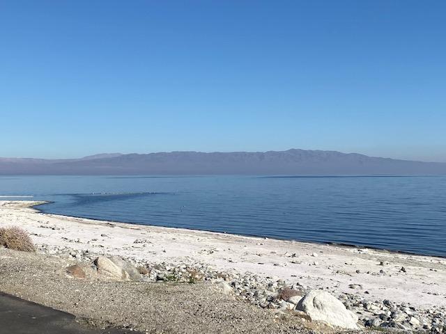 Salton Sea - Desert Shores