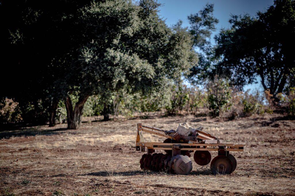 Khyra Beaucrest Ranch   Cherry Valley 23