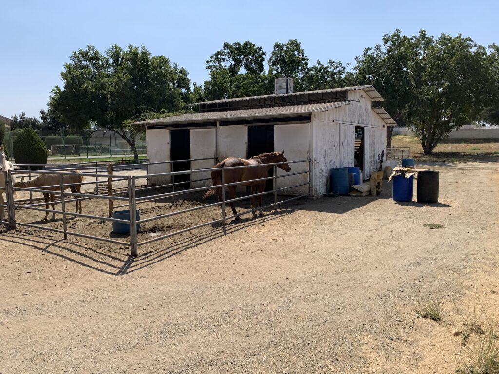 Khyra Beaucrest Ranch   Cherry Valley 26