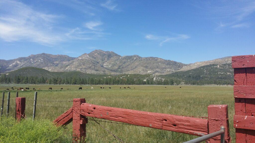 Garner Valley Ranch-Mountain Center
