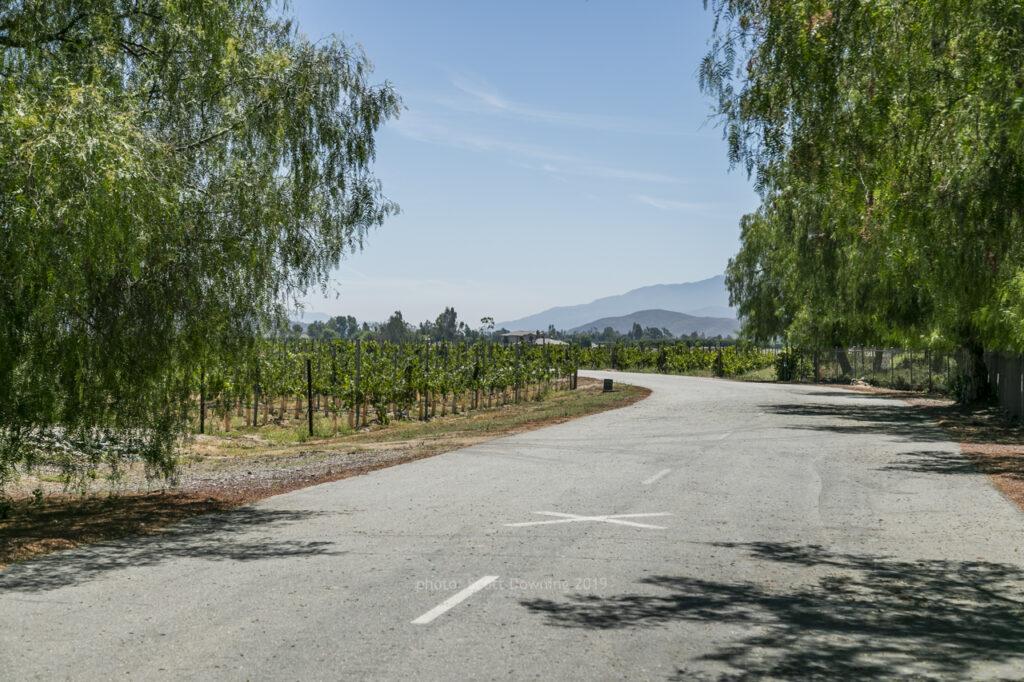 South Coast Winery Access Rd   Temecula