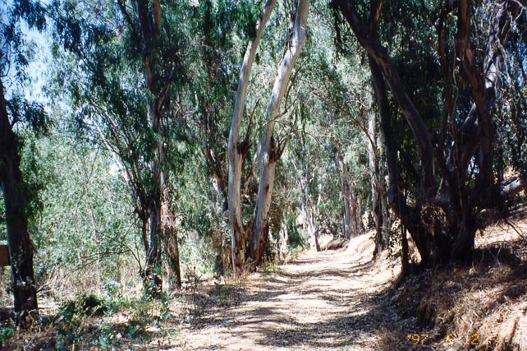 Hidden Valley Wildlife Area   Riverside 3
